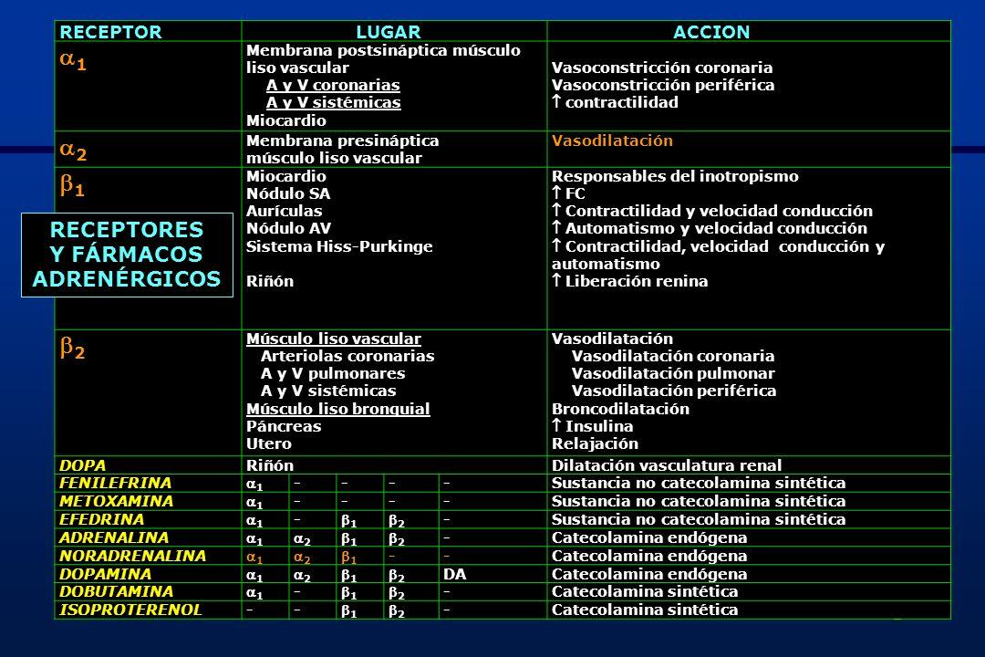 3 DIGOXINA NERIUM OLEANDER O ADELFADIGITÁLIS PURPÚREA O DEDALERADIGITALIS LANATATHEVETHIA PERUVIANA O ADELFA AMARILLAEUBACTERIUM LENTUM Generalidades - Glucósido: sustancia origen vegetal que enlentece velocidad conducción A-V y mejora contractilidad - Intoxicación aguda (50% mortalidad) 2-3 mg producen sintomatología 5 mg (20 cp) trastornos cardiovasculares de riesgo vital > 10 mg parada cardiaca - Intoxicación crónica: más común y frecuente x estrecho rango terapéutico (9,4% intoxicaciones medicamentosas) - Se absorbe VO al ser hidrosoluble, 65-80% biodisponibilidad, 20-25% se une a proteínas plasmáticos y volumen distribución elevado (4-7 L/Kg) - Efectos comienzan: 30-90 min y máximo: 4-6 h - Semivida eliminación, 75-80% de forma inalterada por vía renal: 36-48 h Si insuficiencia renal: 3,5-5 días - 10% población contiene en la flora intestinal una bacteria anaerobia GRAM (+), Eubacterium lentum, que convierte la digoxina en metabolitos inactivos reduciendo su biodisponibilidad