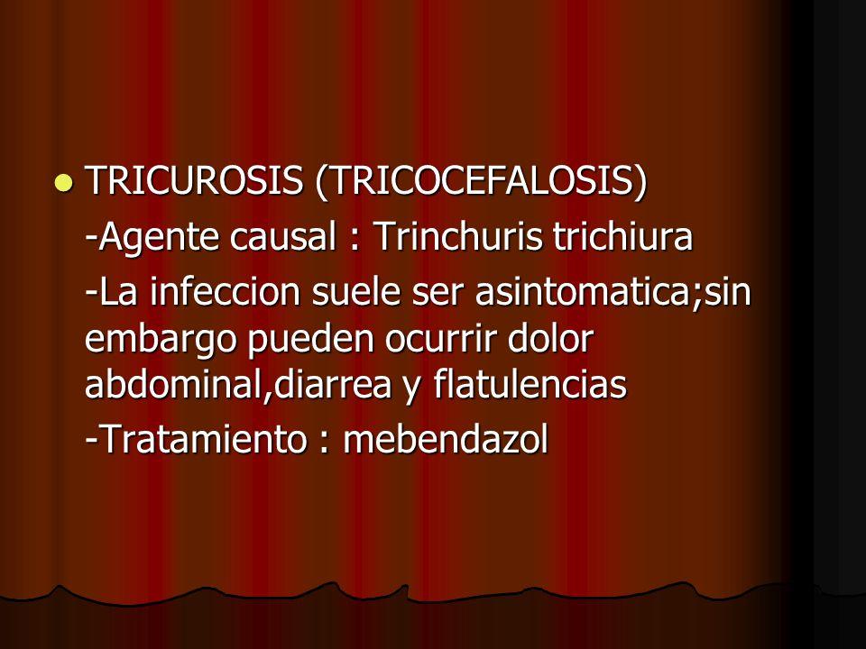 TRICUROSIS (TRICOCEFALOSIS) TRICUROSIS (TRICOCEFALOSIS) -Agente causal : Trinchuris trichiura -La infeccion suele ser asintomatica;sin embargo pueden ocurrir dolor abdominal,diarrea y flatulencias -Tratamiento : mebendazol