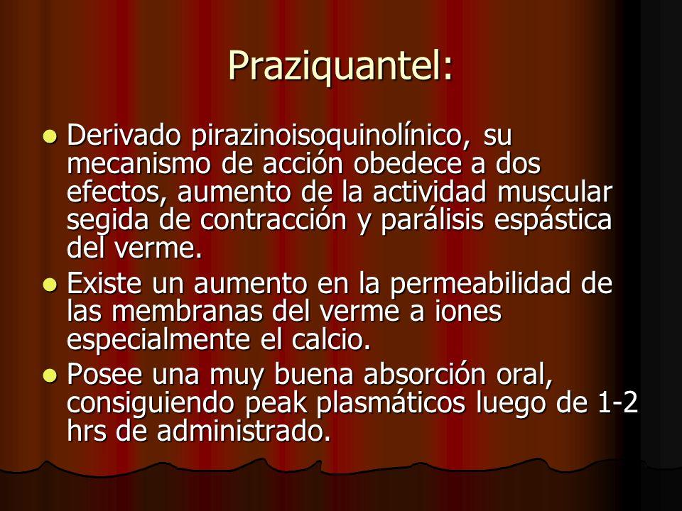 Praziquantel: Derivado pirazinoisoquinolínico, su mecanismo de acción obedece a dos efectos, aumento de la actividad muscular segida de contracción y parálisis espástica del verme.