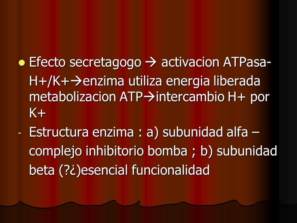 Efecto secretagogo activacion ATPasa- Efecto secretagogo activacion ATPasa- H+/K+ enzima utiliza energia liberada metabolizacion ATP intercambio H+ po