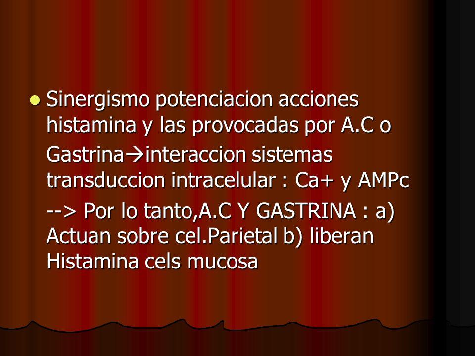 Sinergismo potenciacion acciones histamina y las provocadas por A.C o Sinergismo potenciacion acciones histamina y las provocadas por A.C o Gastrina interaccion sistemas transduccion intracelular : Ca+ y AMPc --> Por lo tanto,A.C Y GASTRINA : a) Actuan sobre cel.Parietal b) liberan Histamina cels mucosa