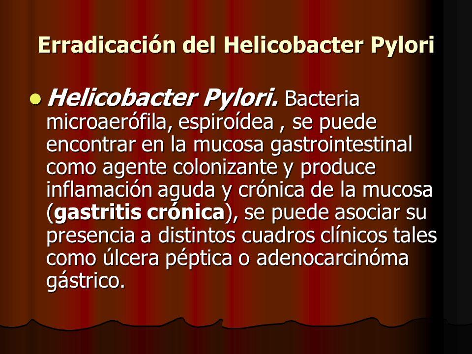 Erradicación del Helicobacter Pylori Helicobacter Pylori. Bacteria microaerófila, espiroídea, se puede encontrar en la mucosa gastrointestinal como ag
