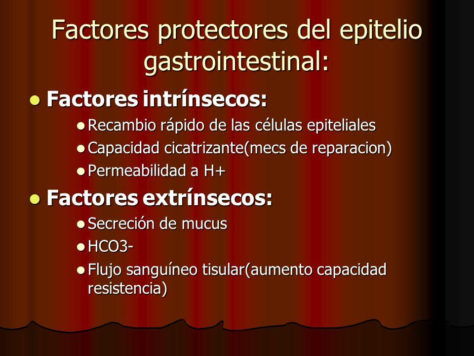 Factores protectores del epitelio gastrointestinal: Factores intrínsecos: Factores intrínsecos: Recambio rápido de las células epiteliales Recambio rápido de las células epiteliales Capacidad cicatrizante(mecs de reparacion) Capacidad cicatrizante(mecs de reparacion) Permeabilidad a H+ Permeabilidad a H+ Factores extrínsecos: Factores extrínsecos: Secreción de mucus Secreción de mucus HCO3- HCO3- Flujo sanguíneo tisular(aumento capacidad resistencia) Flujo sanguíneo tisular(aumento capacidad resistencia)
