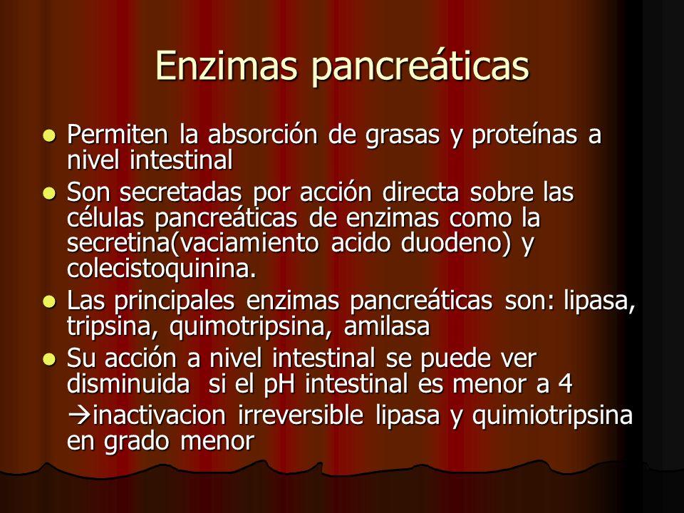 Enzimas pancreáticas Permiten la absorción de grasas y proteínas a nivel intestinal Permiten la absorción de grasas y proteínas a nivel intestinal Son secretadas por acción directa sobre las células pancreáticas de enzimas como la secretina(vaciamiento acido duodeno) y colecistoquinina.