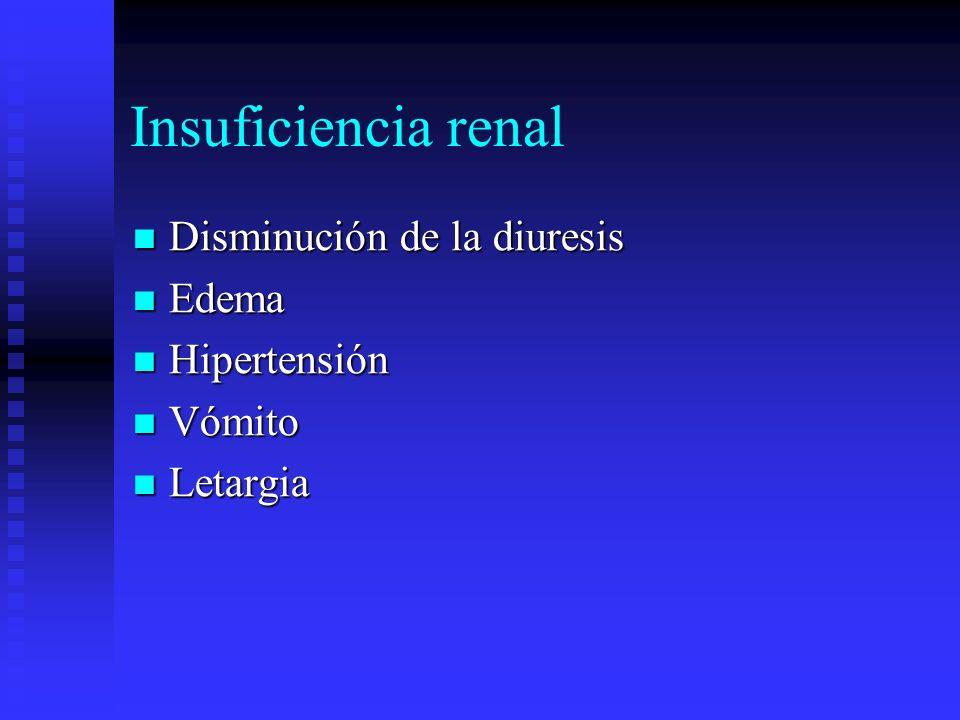 Insuficiencia renal Disminución de la diuresis Disminución de la diuresis Edema Edema Hipertensión Hipertensión Vómito Vómito Letargia Letargia