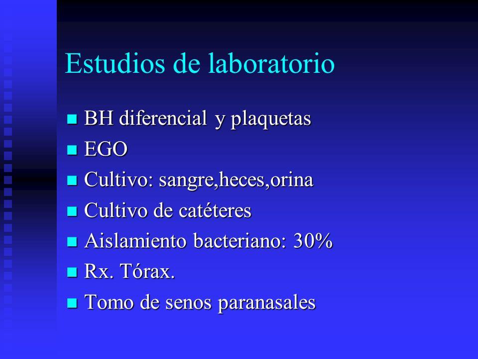 Estudios de laboratorio BH diferencial y plaquetas BH diferencial y plaquetas EGO EGO Cultivo: sangre,heces,orina Cultivo: sangre,heces,orina Cultivo