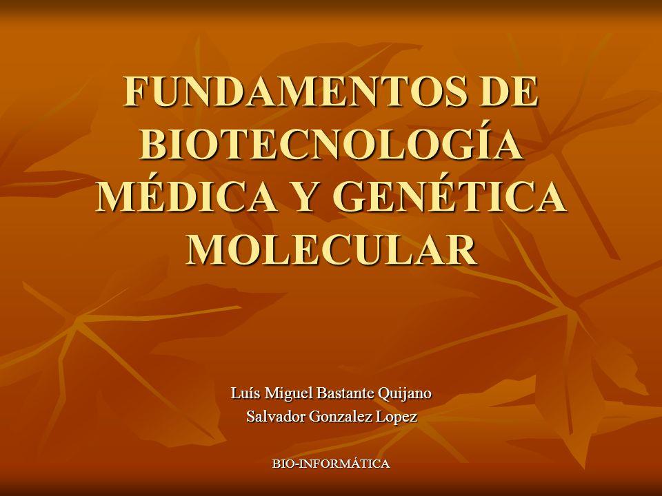 BIO-INFORMÁTICA FUNDAMENTOS DE BIOTECNOLOGÍA MÉDICA Y GENÉTICA MOLECULAR Luís Miguel Bastante Quijano Salvador Gonzalez Lopez