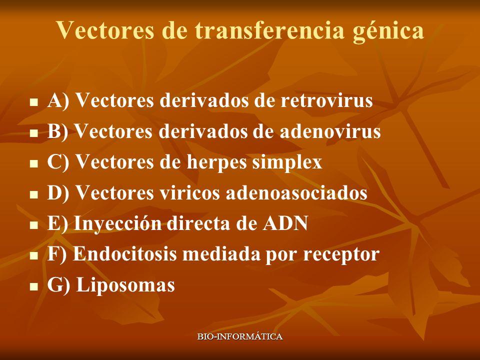 BIO-INFORMÁTICA Vectores de transferencia génica A) Vectores derivados de retrovirus B) Vectores derivados de adenovirus C) Vectores de herpes simplex
