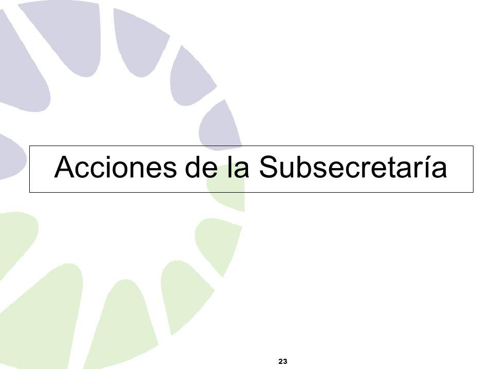 23 Acciones de la Subsecretaría