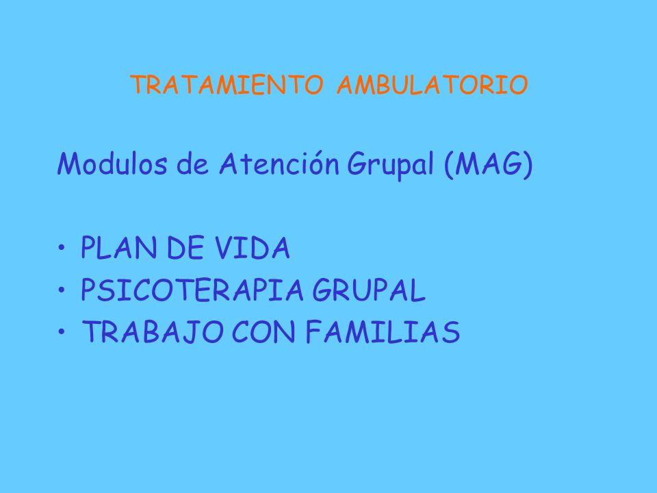 TRATAMIENTO AMBULATORIO Modulos de Atención Grupal (MAG) PLAN DE VIDA PSICOTERAPIA GRUPAL TRABAJO CON FAMILIAS