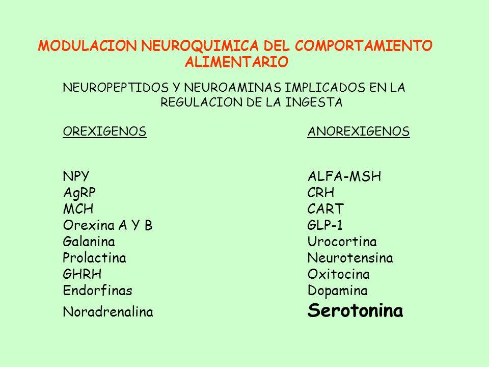 MODULACION NEUROQUIMICA DEL COMPORTAMIENTO ALIMENTARIO COMPARTIMENTOS: - OROSENSORIAL - Propiedades organolépticas - GASTROINTESTINAL - Distensión y v