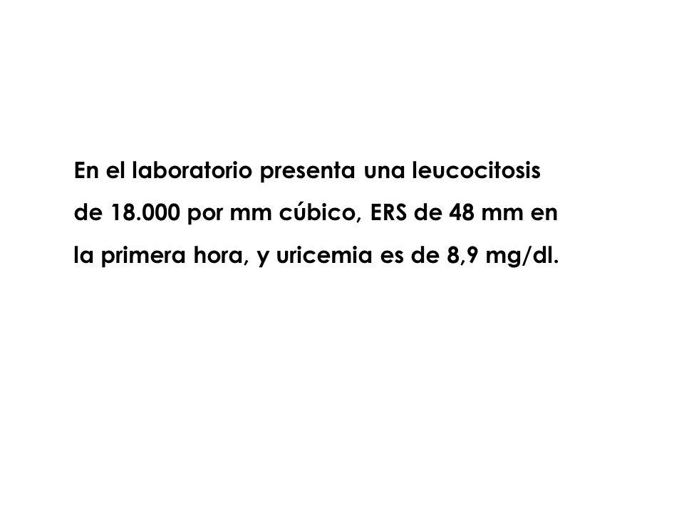 En el laboratorio presenta una leucocitosis de 18.000 por mm cúbico, ERS de 48 mm en la primera hora, y uricemia es de 8,9 mg/dl.