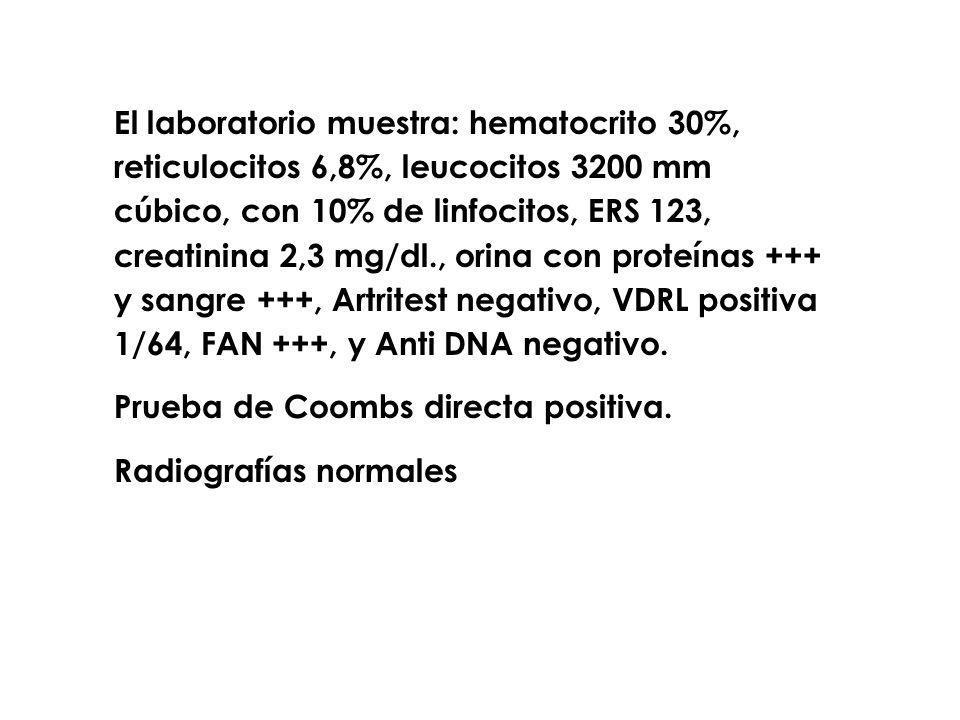 El laboratorio muestra: hematocrito 30%, reticulocitos 6,8%, leucocitos 3200 mm cúbico, con 10% de linfocitos, ERS 123, creatinina 2,3 mg/dl., orina c