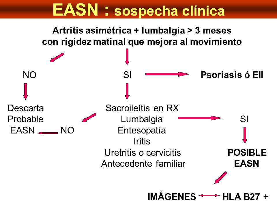 EASN : sospecha clínica Artritis asimétrica + lumbalgia > 3 meses con rigidez matinal que mejora al movimiento NO SI Psoriasis ó EII Descarta Sacroile