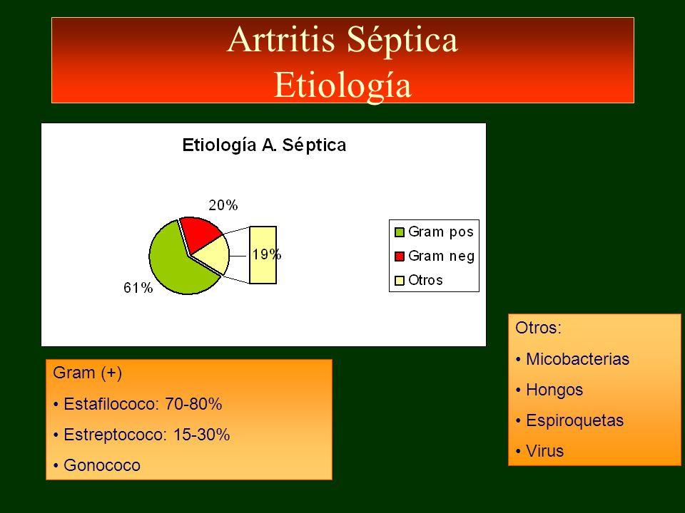 Artritis Séptica Etiología Otros: Micobacterias Hongos Espiroquetas Virus Gram (+) Estafilococo: 70-80% Estreptococo: 15-30% Gonococo