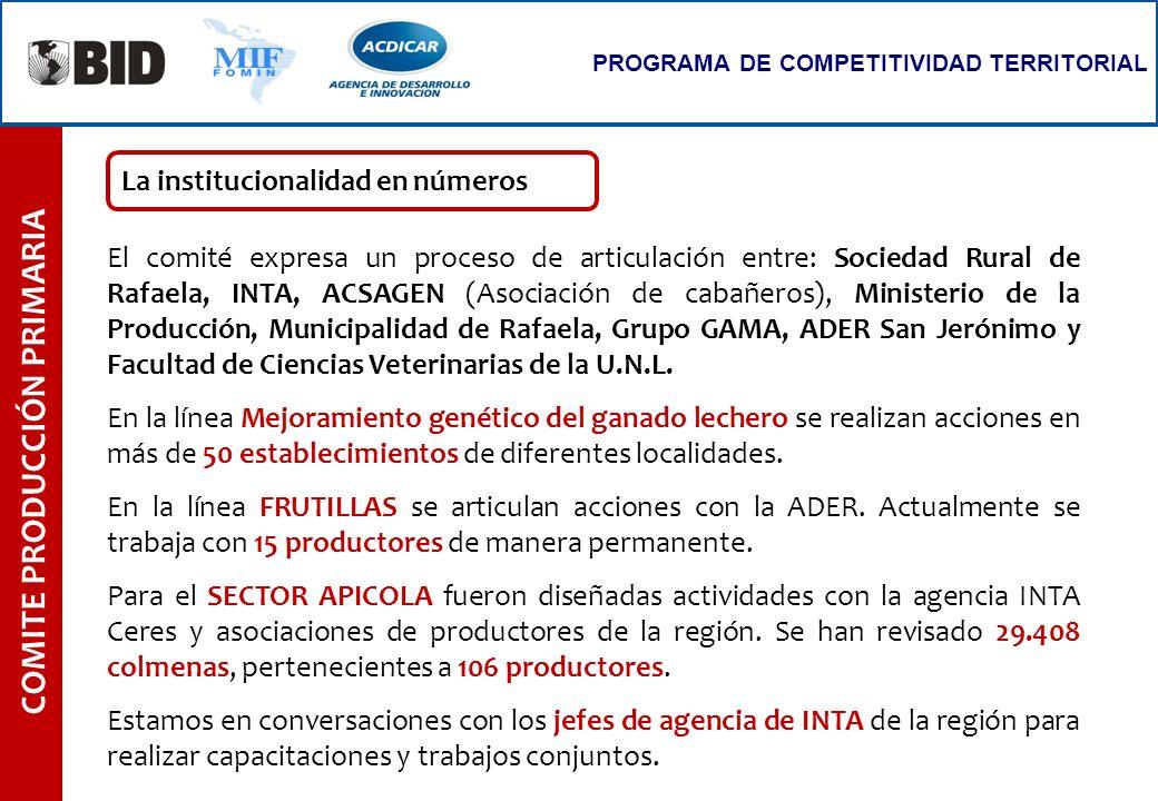 COMITE PRODUCCIÓN PRIMARIA PROGRAMA DE COMPETITIVIDAD TERRITORIAL El comité expresa un proceso de articulación entre: Sociedad Rural de Rafaela, INTA,