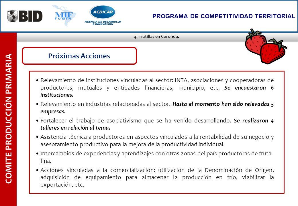 4. Frutillas en Coronda. COMITE PRODUCCIÓN PRIMARIA PROGRAMA DE COMPETITIVIDAD TERRITORIAL Relevamiento de instituciones vinculadas al sector: INTA, a