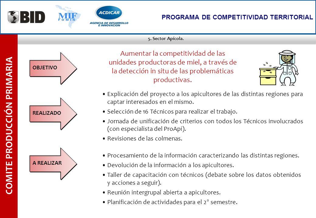 5. Sector Apícola. COMITE PRODUCCIÓN PRIMARIA PROGRAMA DE COMPETITIVIDAD TERRITORIAL Explicación del proyecto a los apicultores de las distintas regio