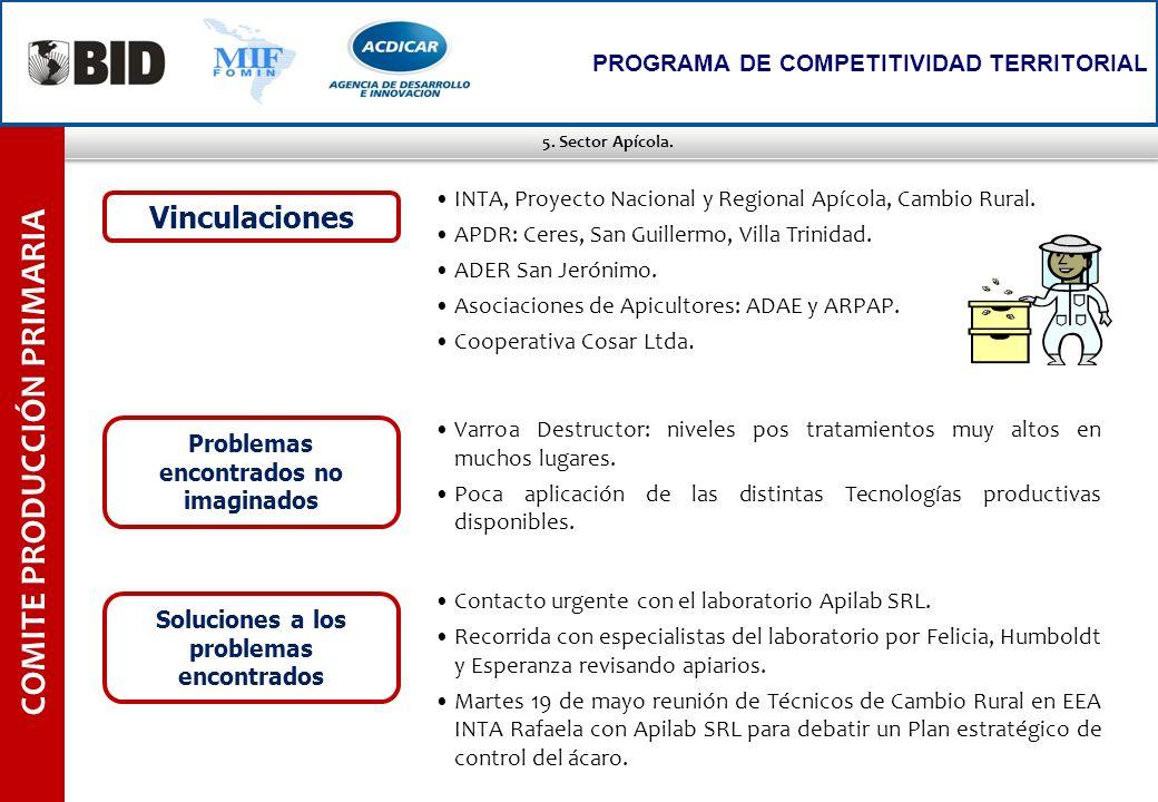 5. Sector Apícola. COMITE PRODUCCIÓN PRIMARIA PROGRAMA DE COMPETITIVIDAD TERRITORIAL Varroa Destructor: niveles pos tratamientos muy altos en muchos l