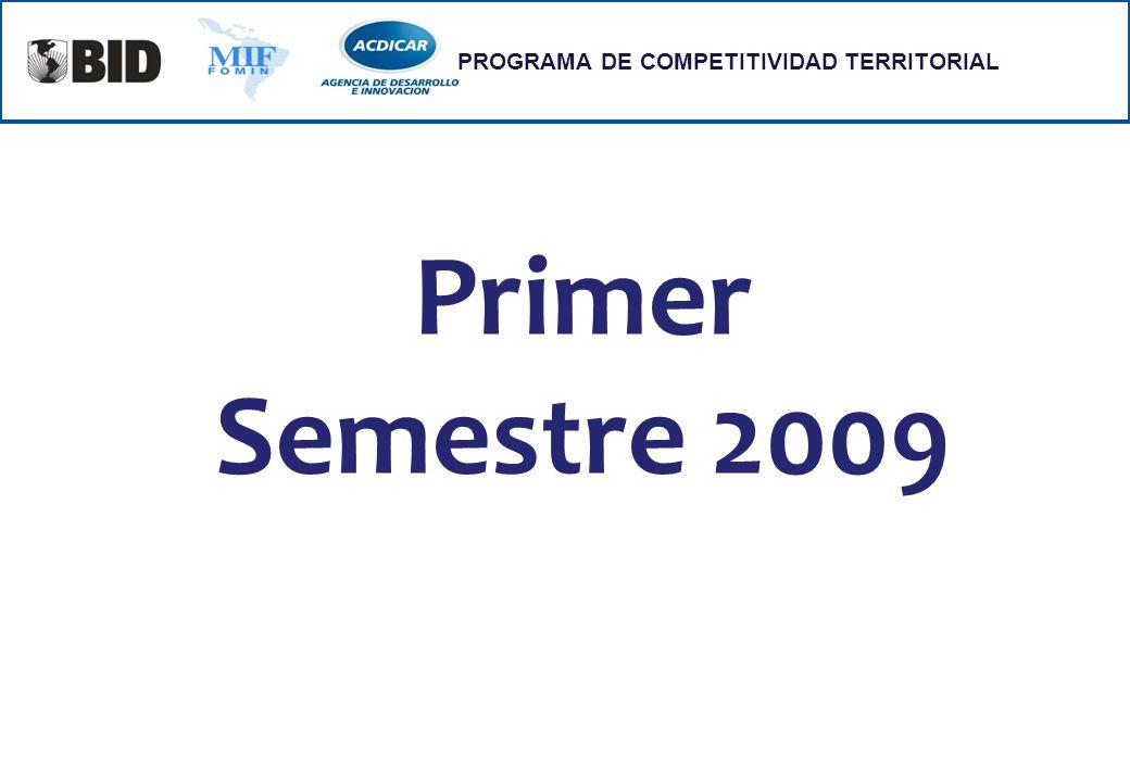 Primer Semestre 2009 PROGRAMA DE COMPETITIVIDAD TERRITORIAL