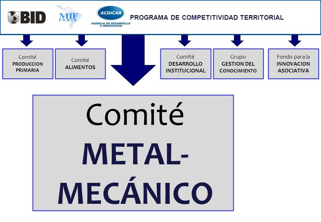 PROGRAMA DE COMPETITIVIDAD TERRITORIAL Comité METAL- MECÁNICO Comité PRODUCCION PRIMARIA Comité ALIMENTOS Comité DESARROLLO INSTITUCIONAL Grupo GESTIO