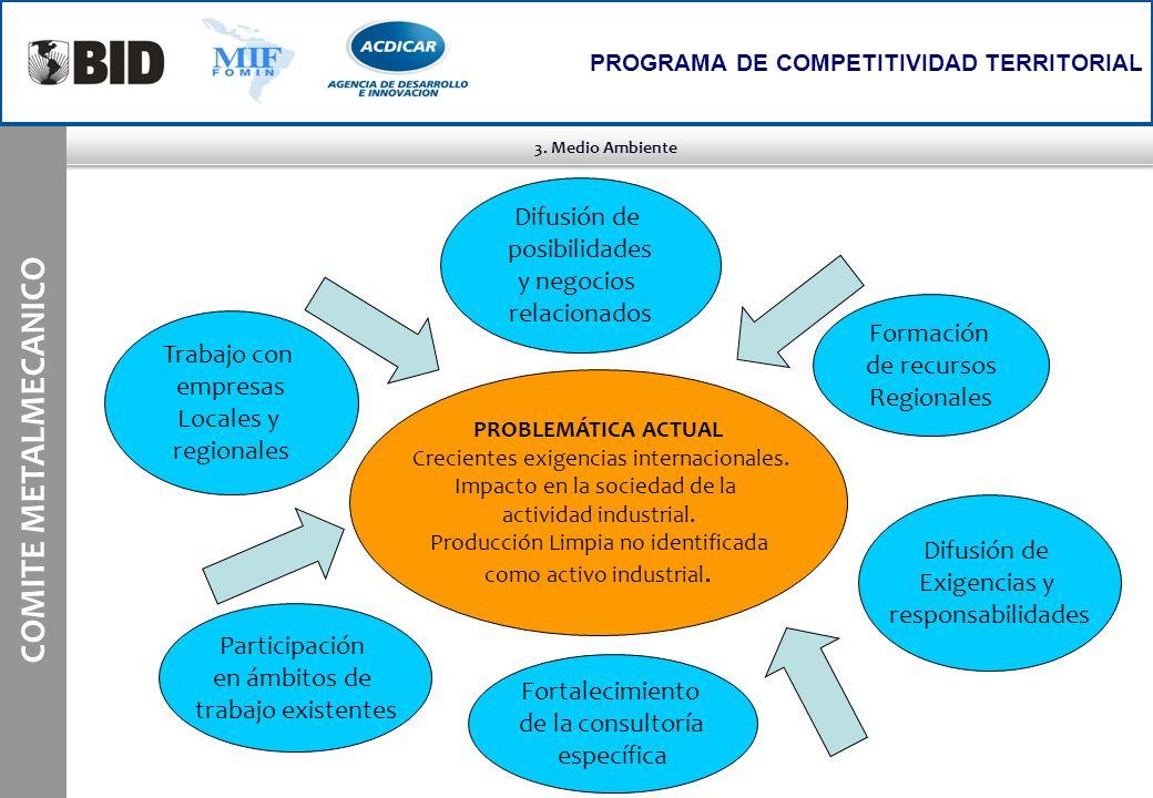 3. Medio Ambiente COMITE METALMECANICO PROGRAMA DE COMPETITIVIDAD TERRITORIAL PROBLEMÁTICA ACTUAL Crecientes exigencias internacionales. Impacto en la