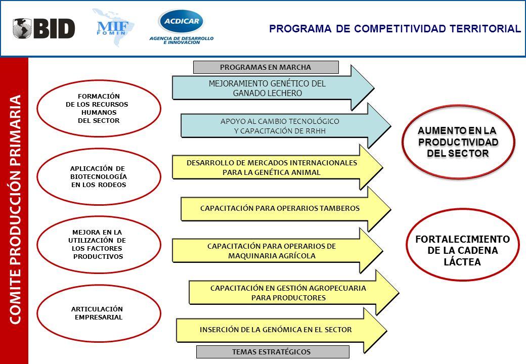 COMITE PRODUCCIÓN PRIMARIA PROGRAMA DE COMPETITIVIDAD TERRITORIAL TEMAS ESTRATÉGICOS PROGRAMAS EN MARCHA AUMENTO EN LA PRODUCTIVIDAD DEL SECTOR AUMENT