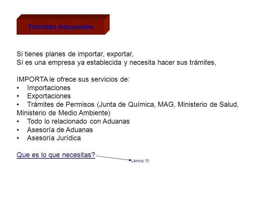 Trámites Aduanales Si tienes planes de importar, exportar, Sí es una empresa ya establecida y necesita hacer sus trámites, IMPORTA le ofrece sus servi