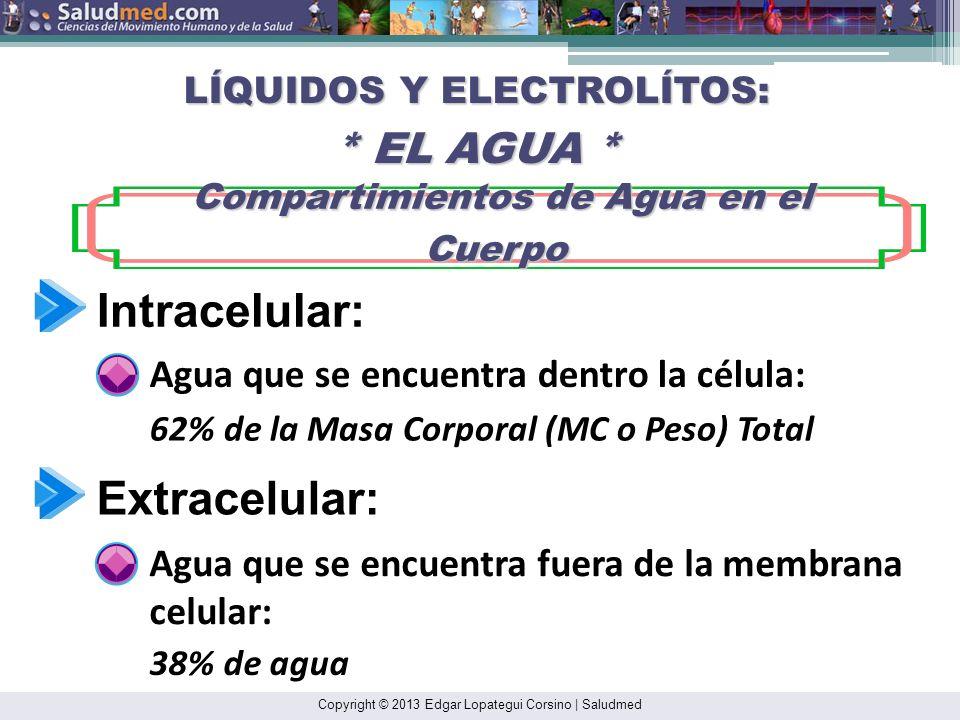 Copyright © 2013 Edgar Lopategui Corsino | Saludmed Nonexercise Activity Thermogenesis: NEAT Termogénesis de las Actividades no Asociadas on el Ejerci