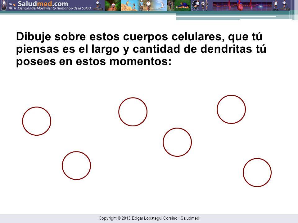 Copyright © 2013 Edgar Lopategui Corsino | Saludmed Pate, R. R., Oneill, J. R., & Lobelo, F. (2008). The evolving definition of sedentary. En P. M. Cl