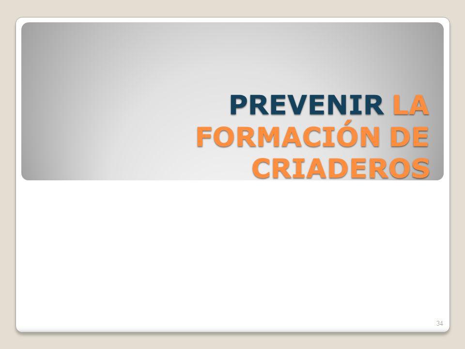 PREVENIR LA FORMACIÓN DE CRIADEROS 34