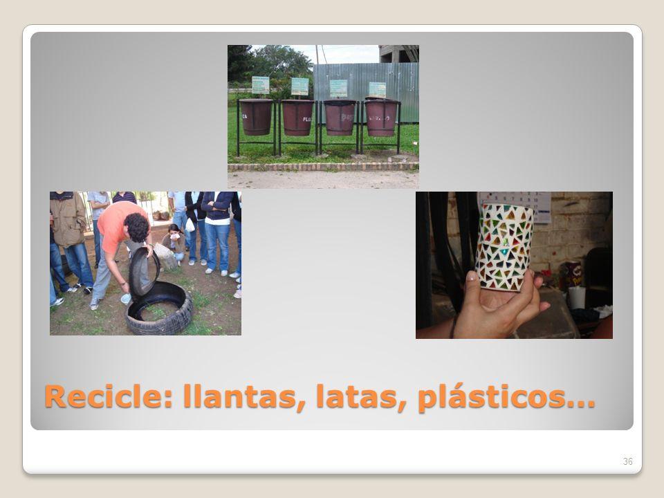 Recicle: llantas, latas, plásticos… 36