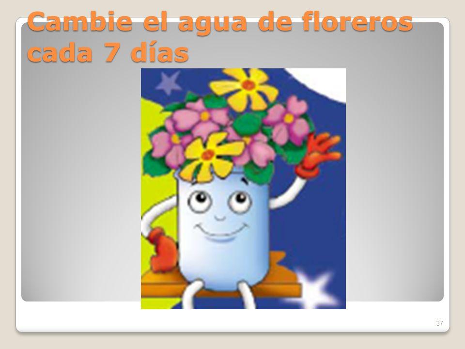 Cambie el agua de floreros cada 7 días 37