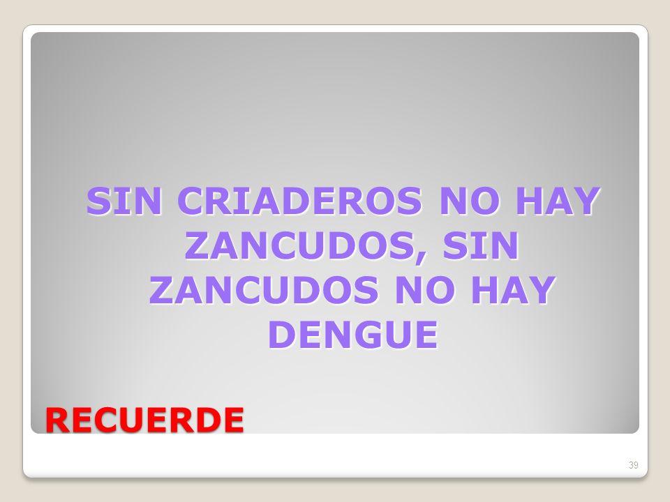RECUERDE SIN CRIADEROS NO HAY ZANCUDOS, SIN ZANCUDOS NO HAY DENGUE 39