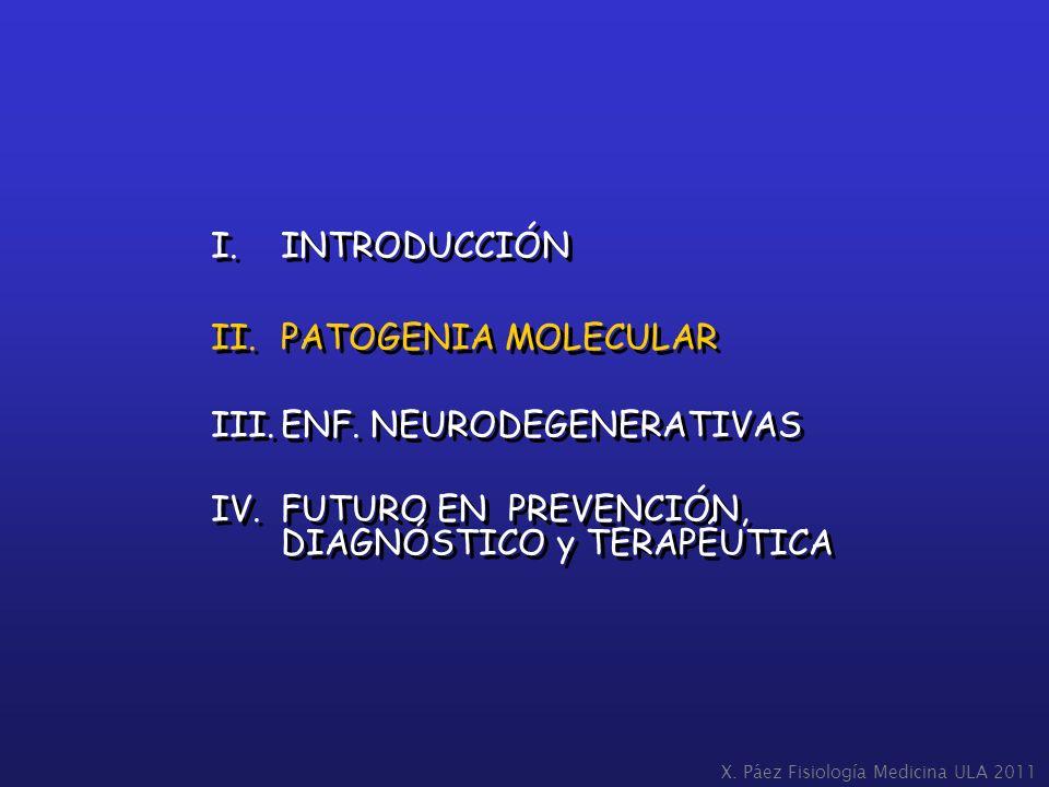 I.INTRODUCCIÓN II.PATOGENIA MOLECULAR III.ENF. NEURODEGENERATIVAS IV.FUTURO EN PREVENCIÓN, DIAGNÓSTICO y TERAPÉUTICA I.INTRODUCCIÓN II.PATOGENIA MOLEC
