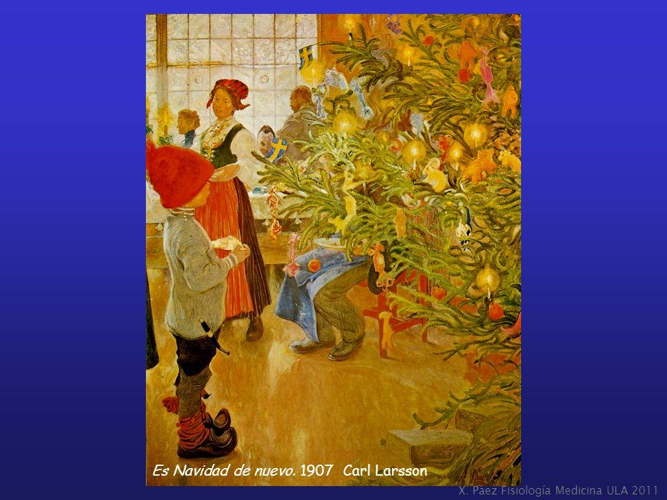 X. Páez Fisiología Medicina ULA 2011 Es Navidad de nuevo. 1907 Carl Larsson