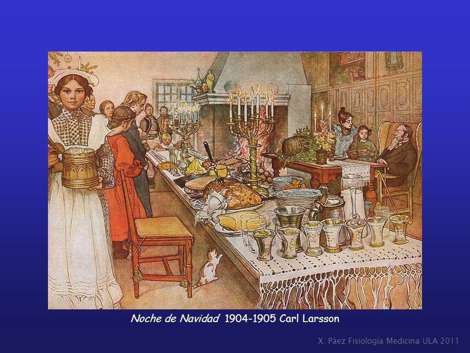 X. Páez Fisiología Medicina ULA 2011 Noche de Navidad 1904-1905 Carl Larsson
