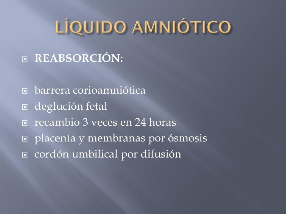 REABSORCIÓN: barrera corioamniótica deglución fetal recambio 3 veces en 24 horas placenta y membranas por ósmosis cordón umbilical por difusión