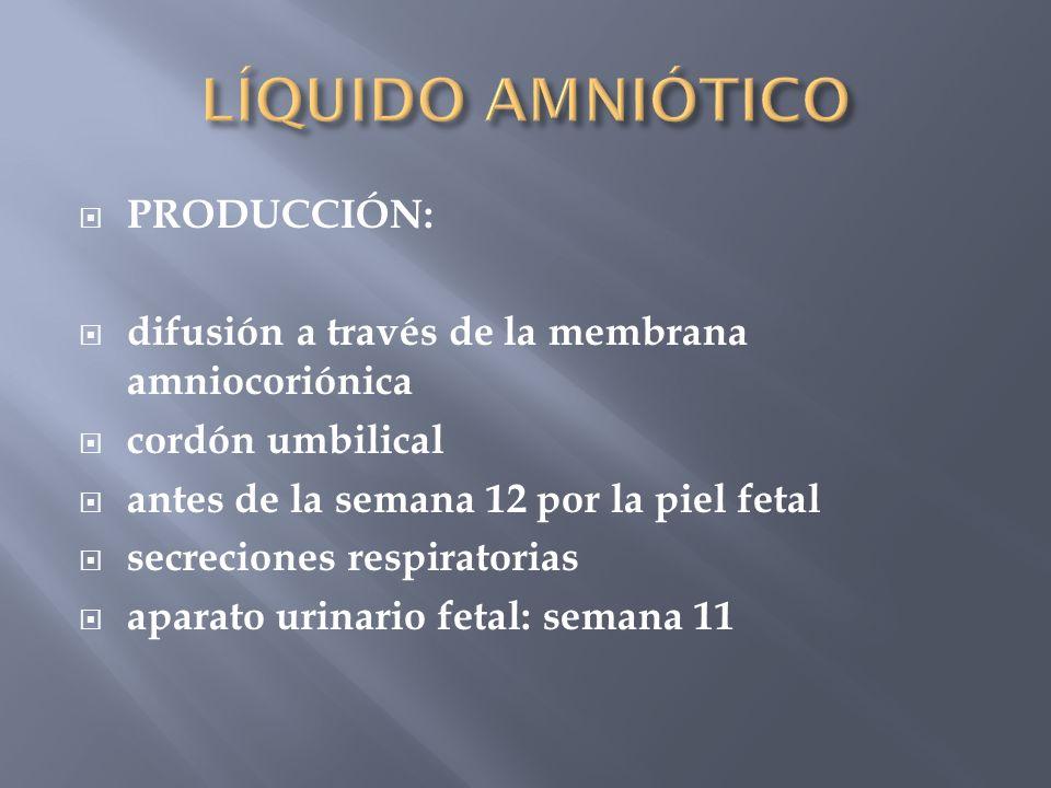 PRODUCCIÓN: difusión a través de la membrana amniocoriónica cordón umbilical antes de la semana 12 por la piel fetal secreciones respiratorias aparato