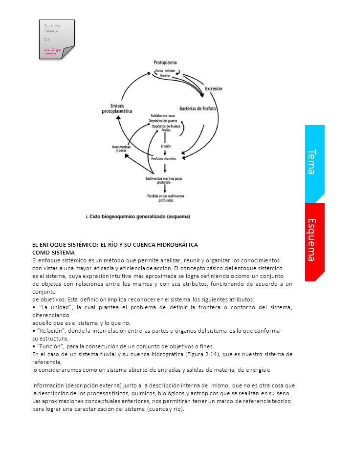 Esquema Tema EL ENFOQUE SISTÉMICO: EL RÍO Y SU CUENCA HIDROGRÁFICA COMO SISTEMA El enfoque sistémico es un método que permite analizar, reunir y organizar los conocimientos con vistas a una mayor eficacia y eficiencia de acción.