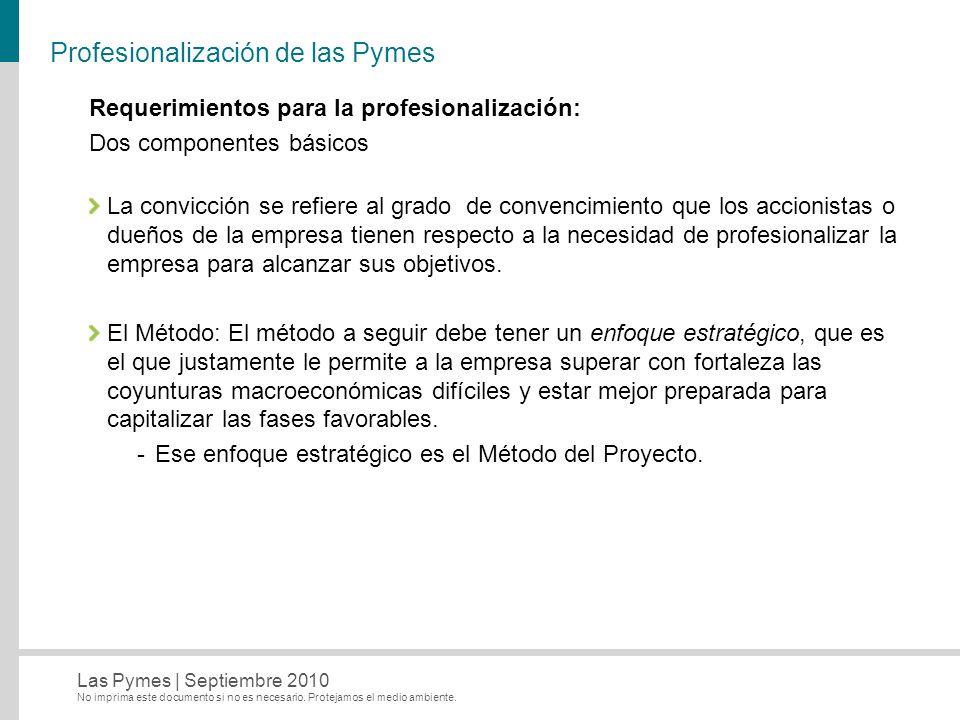 No imprima este documento si no es necesario. Protejamos el medio ambiente. Las Pymes   Septiembre 2010 Profesionalización de las Pymes Requerimientos