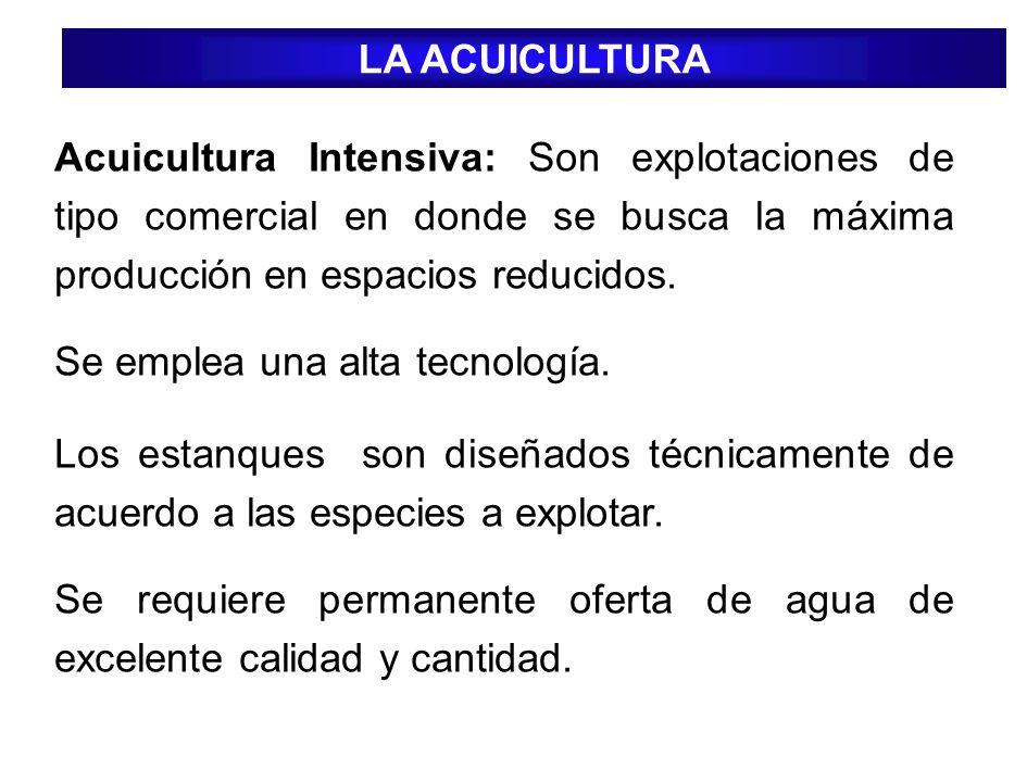 Acuicultura Intensiva: Son explotaciones de tipo comercial en donde se busca la máxima producción en espacios reducidos. Se emplea una alta tecnología