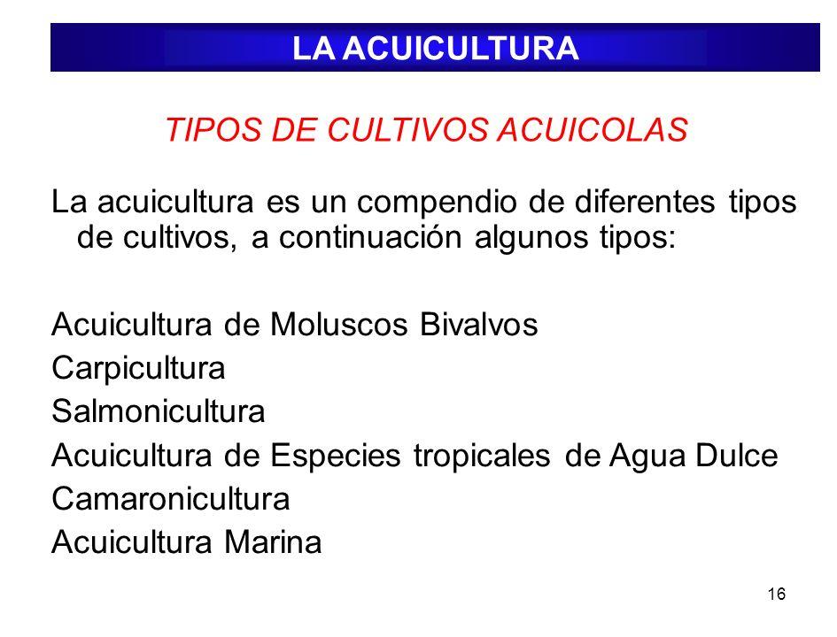 16 TIPOS DE CULTIVOS ACUICOLAS La acuicultura es un compendio de diferentes tipos de cultivos, a continuación algunos tipos: Acuicultura de Moluscos B