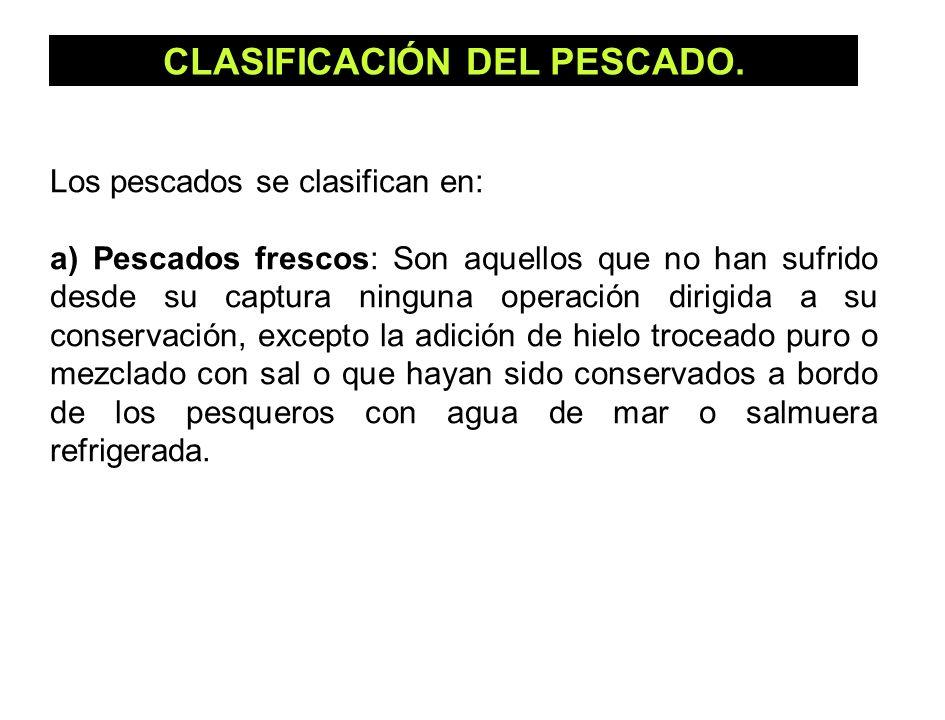 CLASIFICACIÓN DEL PESCADO. Los pescados se clasifican en: a) Pescados frescos: Son aquellos que no han sufrido desde su captura ninguna operación diri