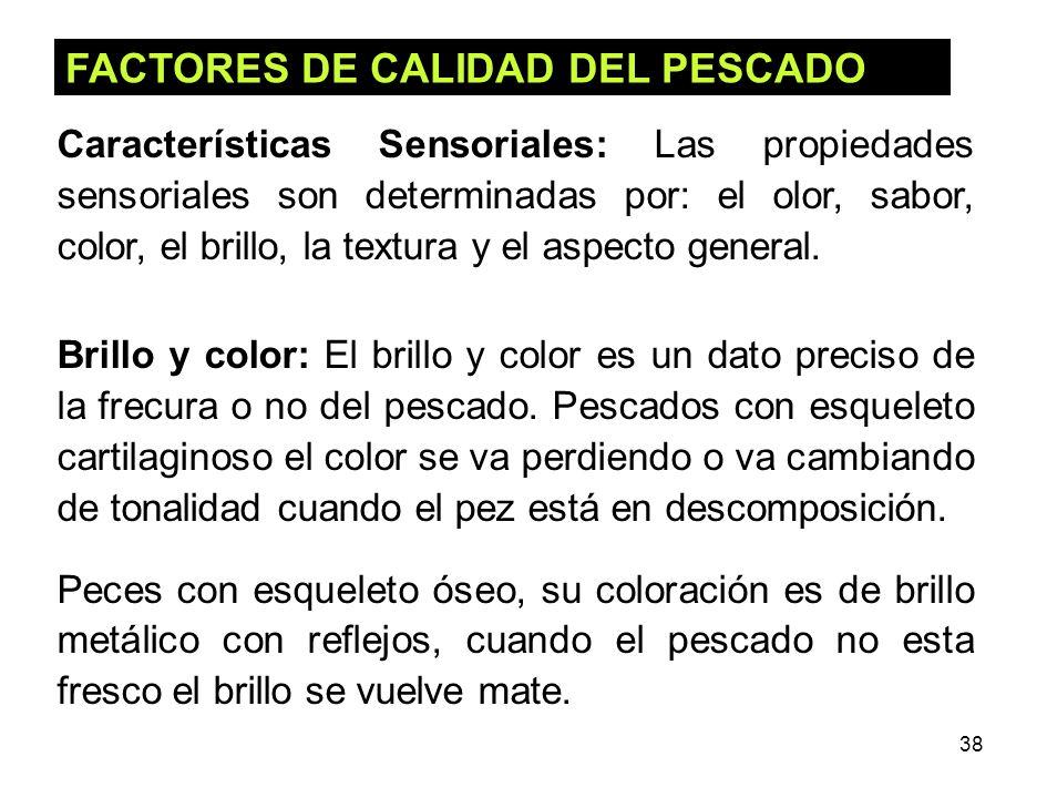 38 FACTORES DE CALIDAD DEL PESCADO Características Sensoriales: Las propiedades sensoriales son determinadas por: el olor, sabor, color, el brillo, la