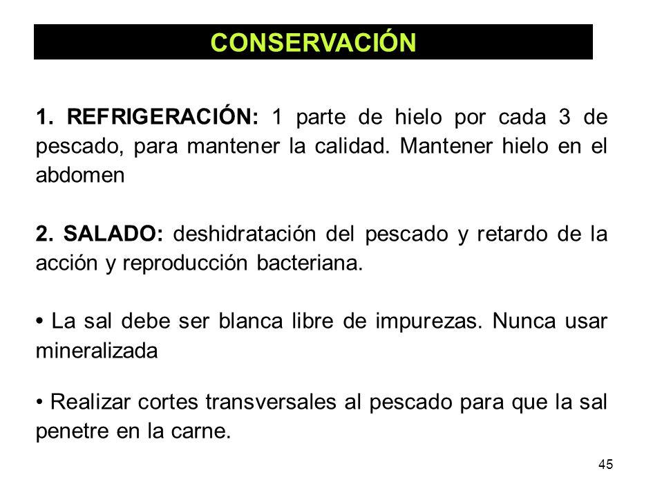 45 CONSERVACIÓN 1. REFRIGERACIÓN: 1 parte de hielo por cada 3 de pescado, para mantener la calidad. Mantener hielo en el abdomen 2. SALADO: deshidrata