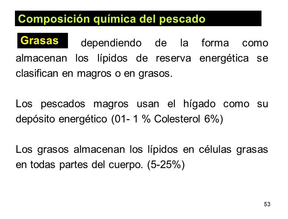 53 dependiendo de la forma como almacenan los lípidos de reserva energética se clasifican en magros o en grasos. Los pescados magros usan el hígado co