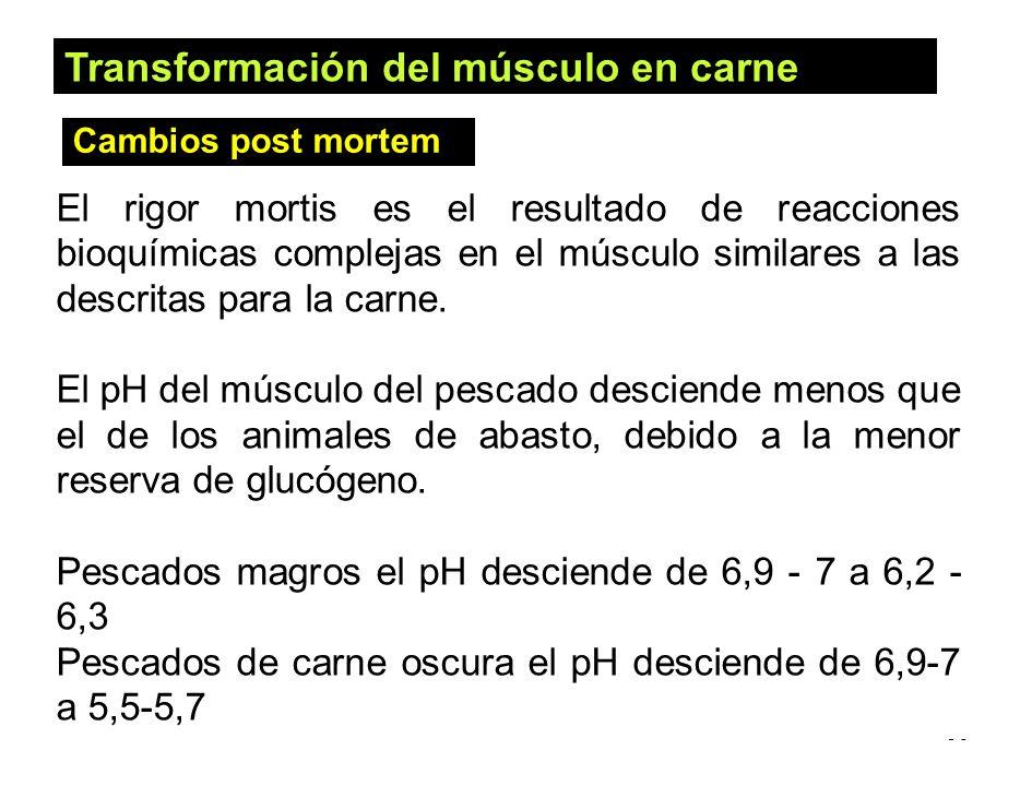 56 El rigor mortis es el resultado de reacciones bioquímicas complejas en el músculo similares a las descritas para la carne. El pH del músculo del pe