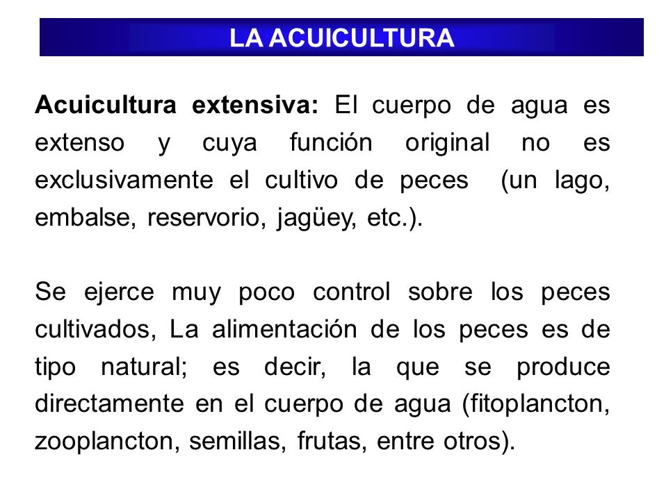 Acuicultura extensiva: El cuerpo de agua es extenso y cuya función original no es exclusivamente el cultivo de peces (un lago, embalse, reservorio, ja
