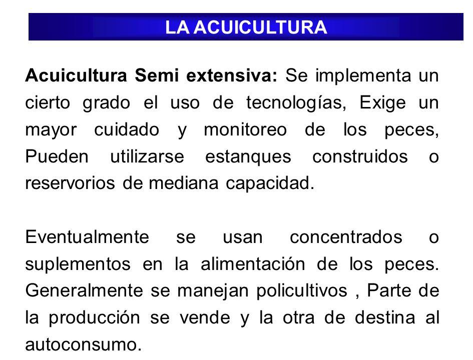Acuicultura Semi extensiva: Se implementa un cierto grado el uso de tecnologías, Exige un mayor cuidado y monitoreo de los peces, Pueden utilizarse es